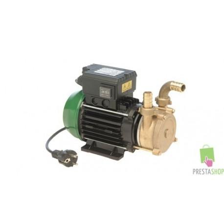 Pumpe - Bronce